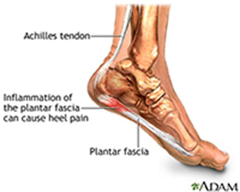 Hip, Foot & Ankle